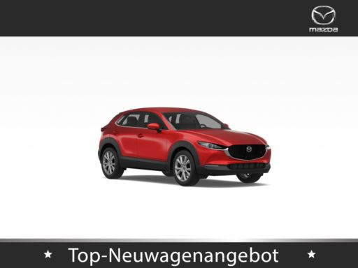 Mazda CX-30  Selection  SKYACTIV-X 2.0 M Hybrid  186PS